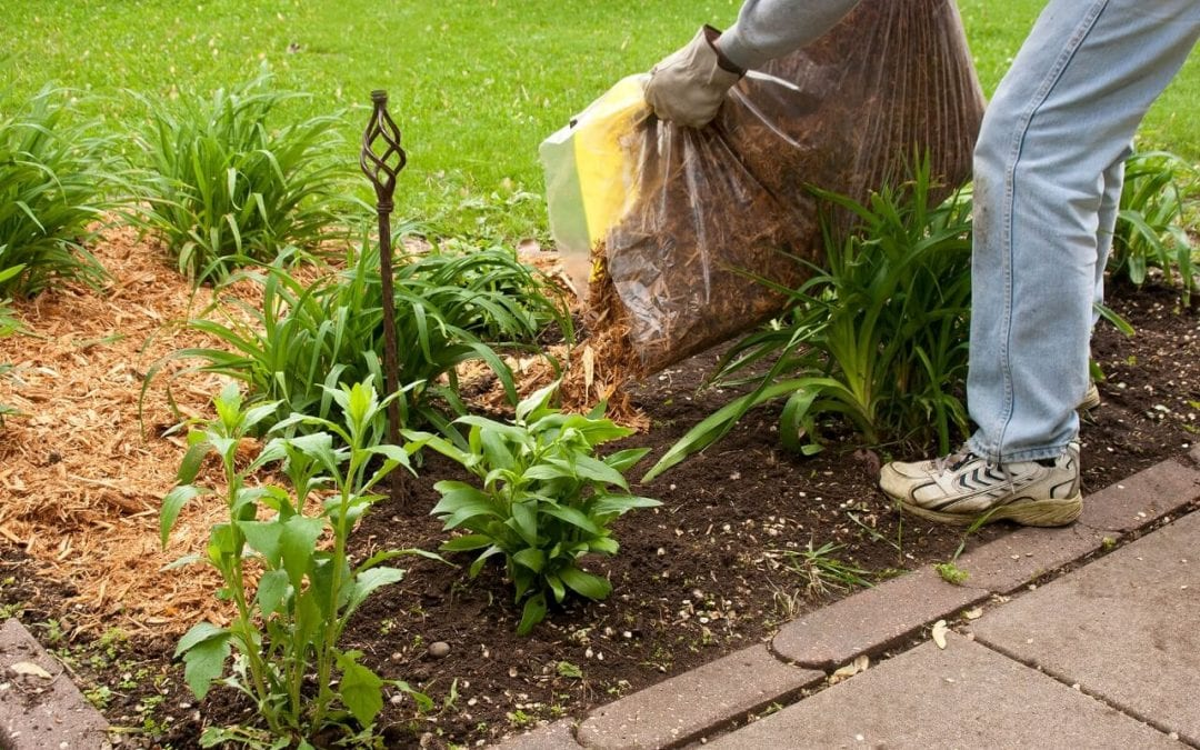 fall home improvement includes adding mulch to protect plants